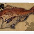 【釣果ジマン】「オリジナル魚拓スマホケース」の制作&販売サービスがスタート!