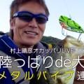 【年末年始企画-5日連続-その2】村上晴彦-冬のバス釣り満喫法「野池deテッパン実釣」
