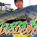【50cmUP連打!】サンショウウオで狙い撃つ琵琶湖シャローハンティング動画公開