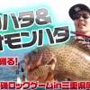 【ハタゲーム】アカハタ&オオモンハタを狙って獲るためのノウハウ実釣動画を紹介【ちょっとしたコツだけ!意外と簡単】