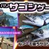 サゴシ(サワラ)のオカッパリからの釣り方を紹介!ルアーの選び方やタックル選択などノウハウ満載