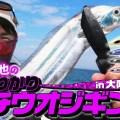 【今が旬】タチウオジギングのノウハウを大玉直也が実釣動画解説