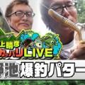村上晴彦の最新オカッパリバス釣りWEB動画公開!秋野池で爆釣を見せたキャラメルシャッドのザリガニアクションとは?