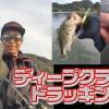 【ディープクランクドラッギング】亀山ダムで流行中の冬バス攻略注目テクを紹介【寄稿by松本恵太】