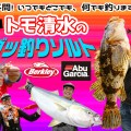 トモ清水「ガッ釣りソルト」モバイルロッドの楽しみ広がる!