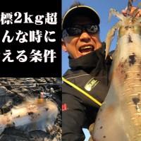 【池内修次の毎日イカ曜日♪】2kgオーバーを釣るためのイロイロ