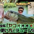 オカッパリバス釣り!沈み虫系「ヤゴーン」の使い方とリグチューン法【寄稿by一拓也】