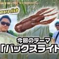 オカッパリバス釣りでのバックスライド攻め!オススメワームや使い方を紹介「水野浩聡のワンモアフィッシュ」