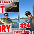 【圧倒的な釣果を叩き出している】RVドリフトクローのリグ解説と水門周りなどに有効的なルアーを紹介!