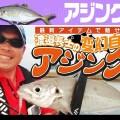 【実釣ムービー】ダイワ・渡邉長士のアジング