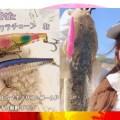 サーフフィッシングにハマり中の釣りガール「エリカ」が超お気に入りルアー「ピンテールサワラチューン」の使い方を紹介
