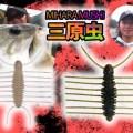 【三原虫】三原直之プロデュース!IMAKATSUの人気ムシ型エビ系ルアーを紹介
