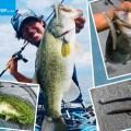 【例年厳しい晩夏の南湖】永野総一朗が今の時期に多用する「普通じゃない釣り方」とは一体?オススメルアーやリグにも注目!
