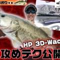 【タフな状況でも大活躍】O.S.Pのネコリグ専用ワーム「HP3Dワッキー5in」を使った秋の琵琶湖攻略テクを詳しく解説!