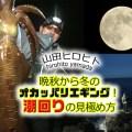 山田ヒロヒトが超解説「晩秋から冬のオカッパリエギング!潮回り見極め法」どんな日に釣行すればデカイカ爆乗り?