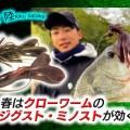 春のオカッパリバス釣りで超効果的な攻め!フラップクローのジグスト&ミノストを紹介