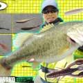 【GWの琵琶湖で人より多く釣る方法】O.S.P河畑文哉に直接取材!超ハイプレ時に有効となる「3種の最強リグ」の使い分け方