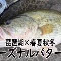 【春夏秋冬】有効なルアーや状況をシッカリ把握!琵琶湖の「シーズナルパターンの基本」