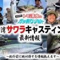 東京湾サワラキャスティング最新情報 ~釣行前に絶対得する情報教えます~