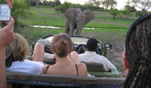 Tourists enjoying a safari in Luangwa national park.