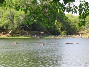 kafue_river_kafue_river