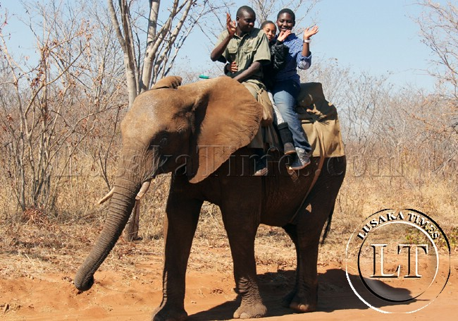 President Sata's son Gerald with a friend merry-making on an elephant in Livingstone