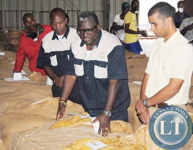 AGRICULTURE and Livestock Minister Wylbur Simuusa (in-glasses) inspects bales of tobacco as Alliance One Zambia scale-scale manager Vincent Shane (right), Stoga chairperson Stainwell Sikambala (far right) and some farmers look on at the Tobacco Board of Zambia shed in Choma