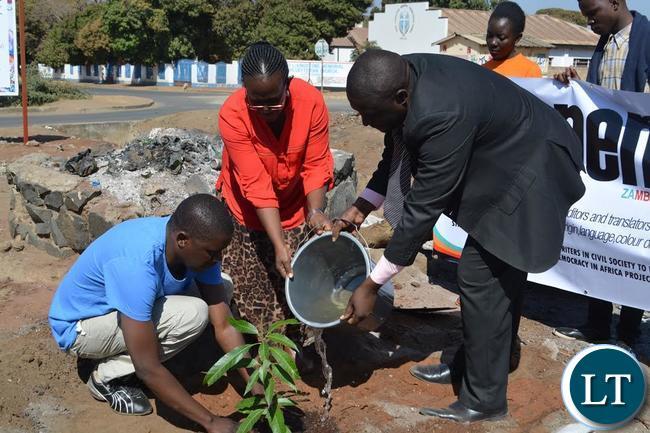 Livingstone Town Clerk Vivian Chikoti (middle), PEN Zambia Secretary Daniel Sikazwe (left) and Livingstone Press Club president Brian Hatyoka (right) planting mango trees on the island of Musitunya Road in Livingstone