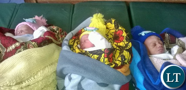 a-23-year-old-girl-of-pwd-compound-in-kawambwa-recently-gave-birth-to-triplet-boys-with-her-first-pregnancy