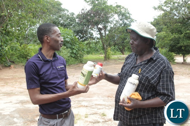 Mkushi farmer Mr Robert Sanani showing some of the insectcides he used in his maize field to Acting district Agricultural officer mr Musenge Chella at his farm