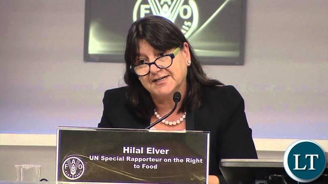 Hilal Elver