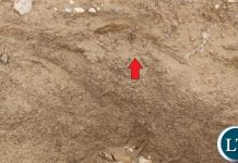 The photos show a site visit to John Liang by Investigation Officers from the Office of the Public Protector as evidence of demarcations and beacons placed in the said portion of the road.