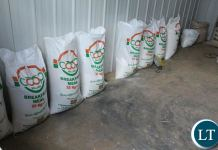 Some of the Mealie meal produced by the Plant