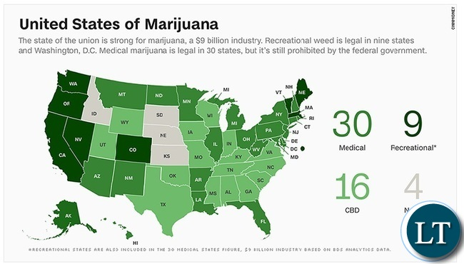 Zambia : Cannabis Business in the U.S. Surpassed Entire ...
