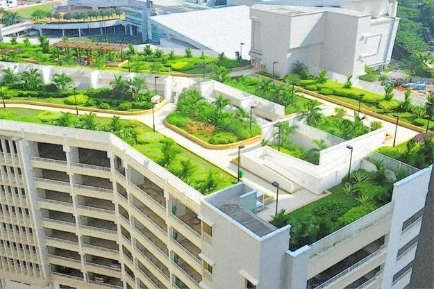 Echo Of The Past Latest Trends In Green Building Of Roof