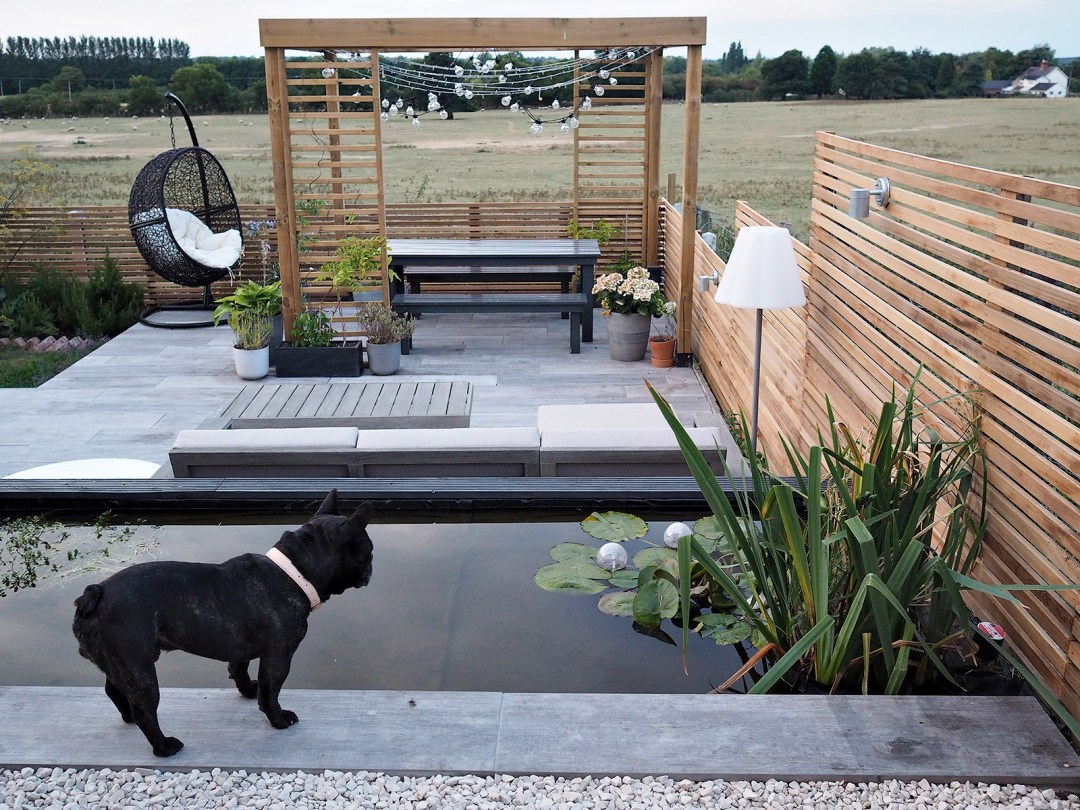 DIY How To Build a Modern Pond