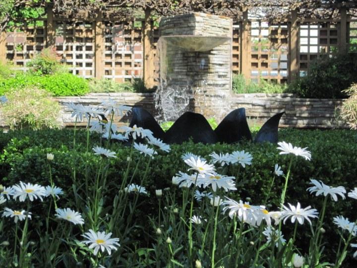 Shasta Daisy, Sundial & Fountain