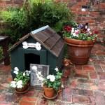 Bonita's doghouse in Courtyard