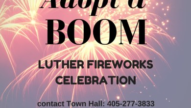 Photo of Adopt A Boom, Fireworks Campaign