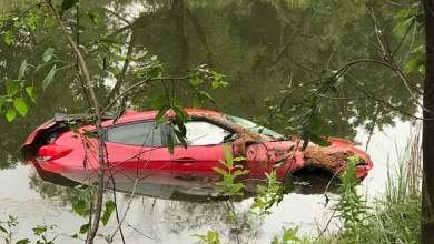 Photo of Stolen Car Submerged in Pond