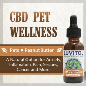 Luvitol CBD Pet Tincture - Organic Peanut Butter