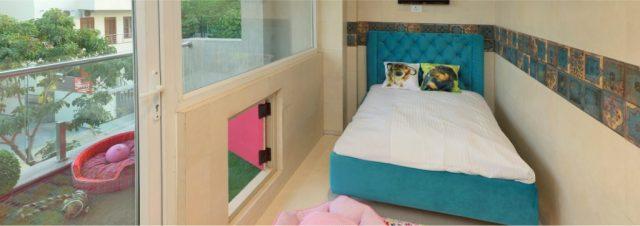 The Critterati suite