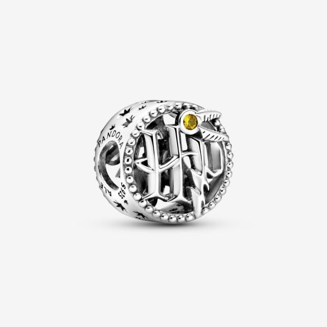 Openwork Harry Potter Icons Charm. Source: Pandora