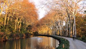 Cycling on the Canal du Midi