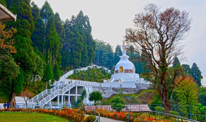 Darjeeling A Taste of Old World Charm 17