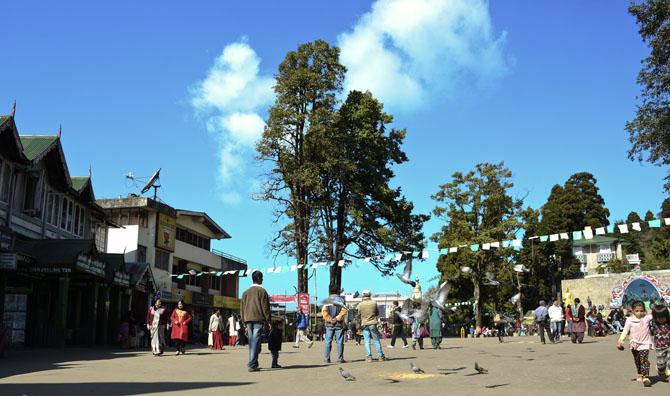 Darjeeling A Taste of Old World Charm 3
