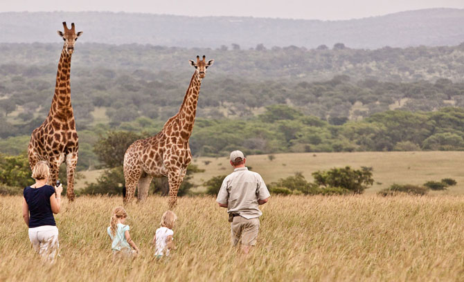 Rhino River Lodge An Exclusive African Escape 8