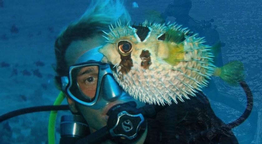 Snorkeling in Maldives 5