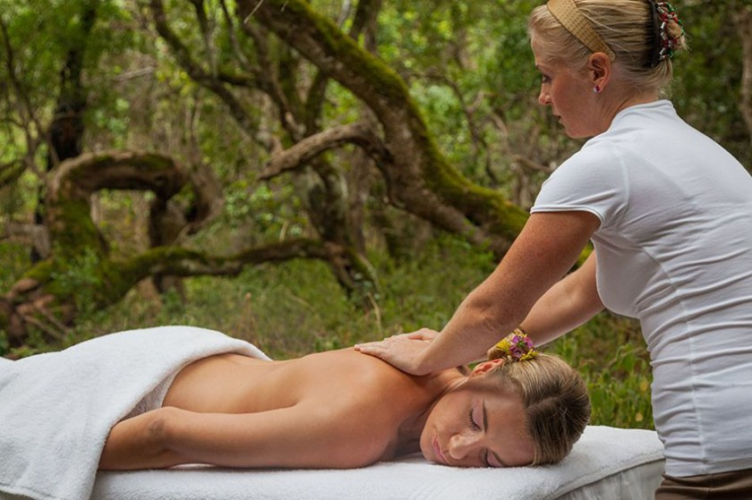 Bloom Forest Spa at Grootbos Private Nature Reserve 5