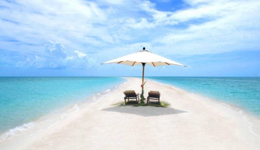 Trip to Paradise 5